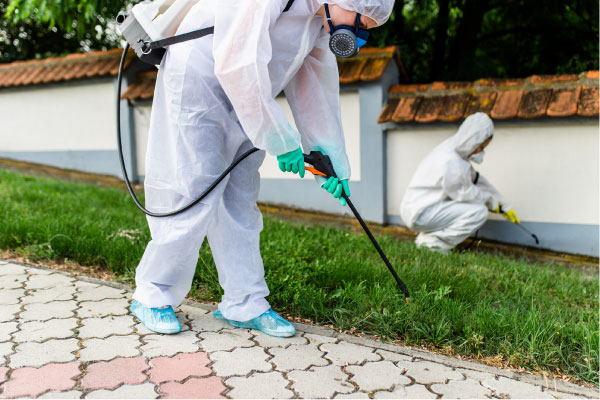 termite pest control technician spraying for pests outside house